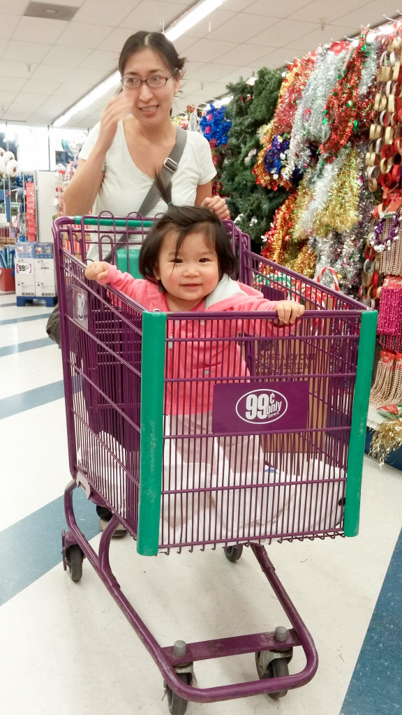 During our first stop on the way to Norcal, I got to ride in a shopping cart for the first time! It was super fun. Mommy bought a few things, including me, for 99 cents!